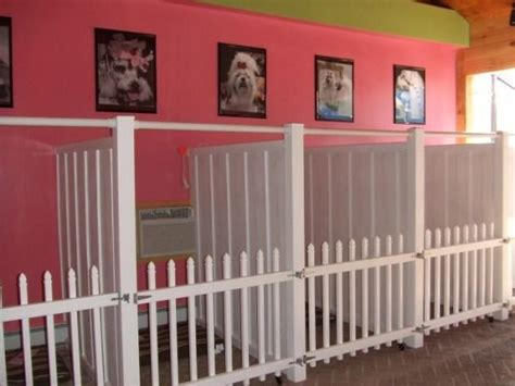 the dog house grooming salon best 25 dog boarding kennels ideas on pinterest doggie