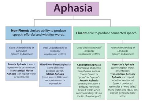 Detox Patient Differential Diagnosis by Aphasia Differential Diagnosis Diagram Speech Path