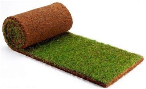 tappeto erba vera prato a rotoli prato