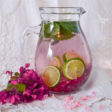 Pomegranate Detox Water Benefits by Pomegranate Mint Infused Water Imperial Club