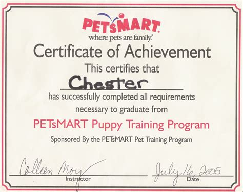 10 certificate template photos of training completion template
