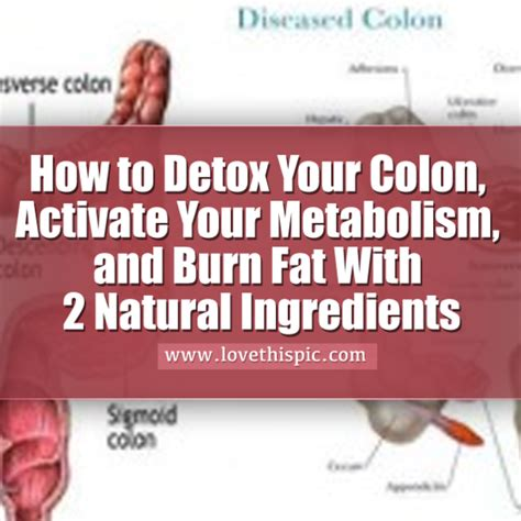 How To Detox Your Intestines And Colon Naturally by How To Detox Your Colon Activate Your Metabolism And