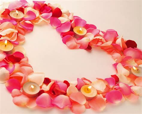 cutest valentines valentines day beautiful backgrounds 2014