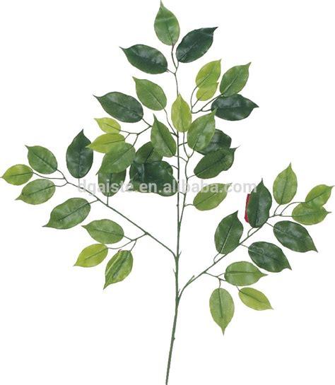 mini tidak lebih tinggi dari 1 m buatan bonsai hijau