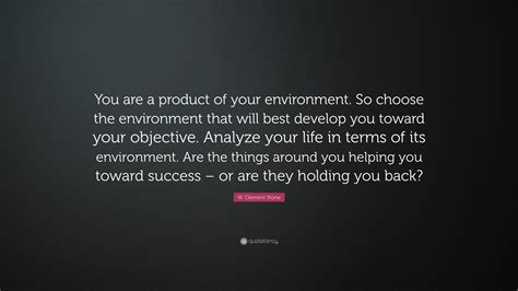 Product Of Your Environment Quote