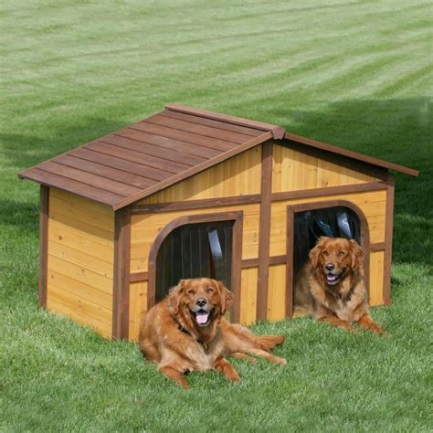 dog houses for multiple dogs photos of dog houses