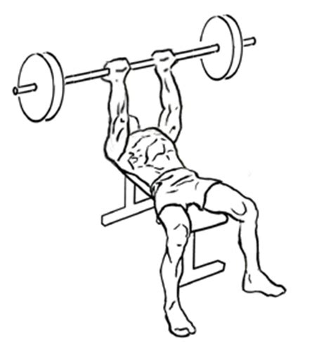 reverse grip barbell bench press reverse triceps bench press add this tricep exercise to your arm workouts