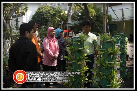 Bawang Goreng Renyah Mandiri kursus budidaya sayuran organik pelatihan usaha kecil