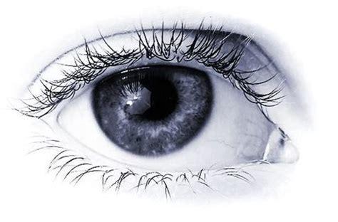 imagenes ojos abiertos si vis pacem junio 2010