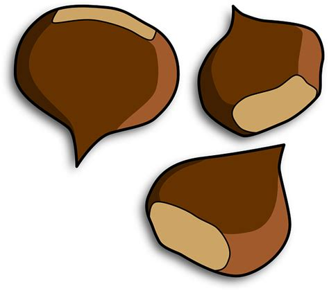 clipart castagne free pictures free clip arts 43488 images found