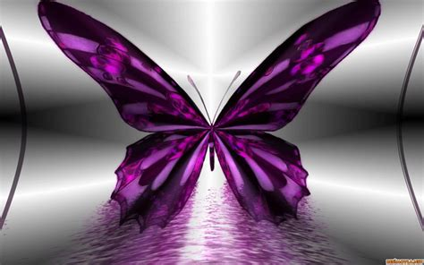 color purple quotes i might be black kelebek resimleri