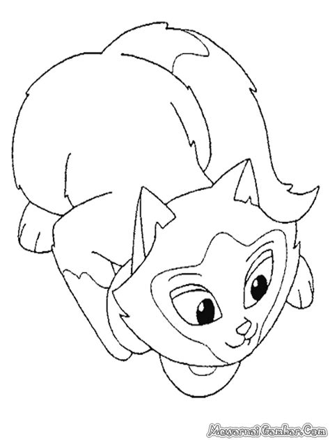 Mewarnai Gambar Kucing   Mewarnai Gambar