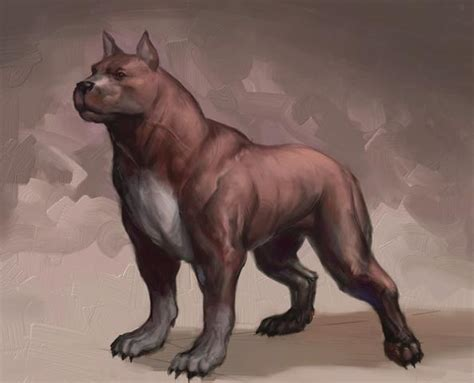 what age can you bathe a puppy mabari war hound age vs dogs and wolves real spacebattles forums