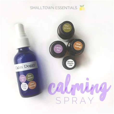 essential oils to calm dogs 25 best ideas about essential oils dogs on essential oils for fleas