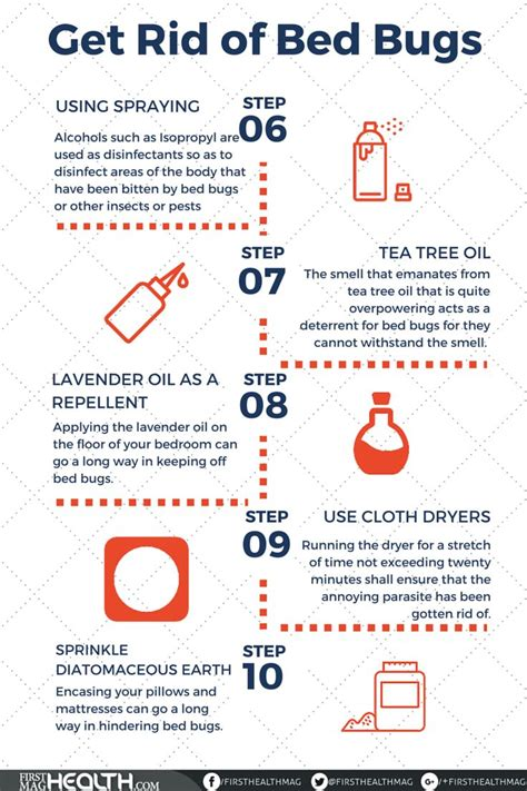 bed bug remedies ideas  pinterest bed bug spray bed bugs  bed bug control