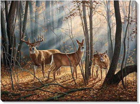 bob ross painting deer 64 best the whitetail images on deer