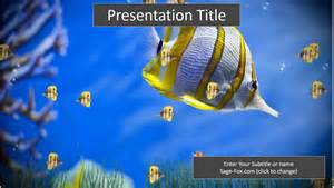 fish powerpoint template colorful fish powerpoint template 6248 free colorful