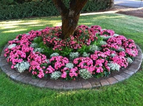 flower beds around trees flower beds around trees pictures reference