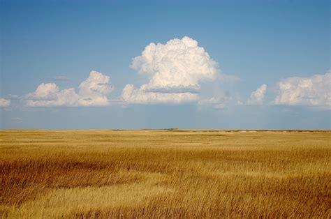 what is a prairie prairie definition what is