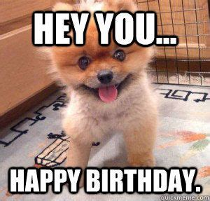 Puppy Birthday Meme - hey you happy birthday cute dog cool j quicklime
