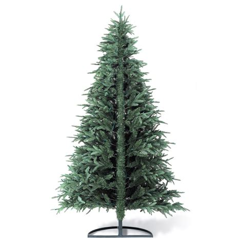 picture of a christmas tree flat back christmas tree the green head