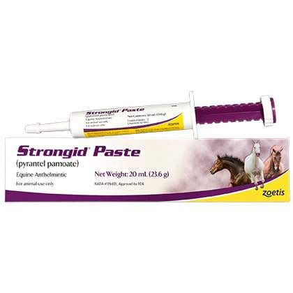 strongid for dogs strongid paste pet wormer wormer for horses 1800petmeds
