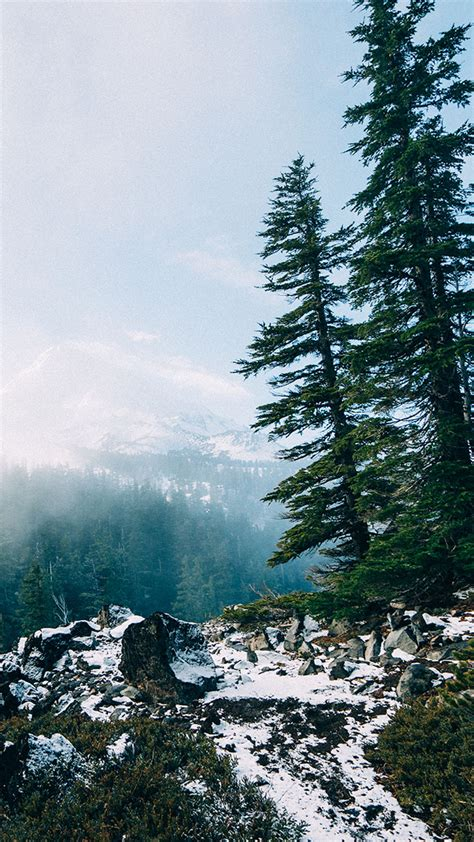 wallpaper iphone forest 16 adventurous forest mountain iphone 7 wallpapers
