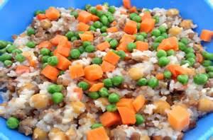 Cody S Blend Homemade Dog Food Recipe