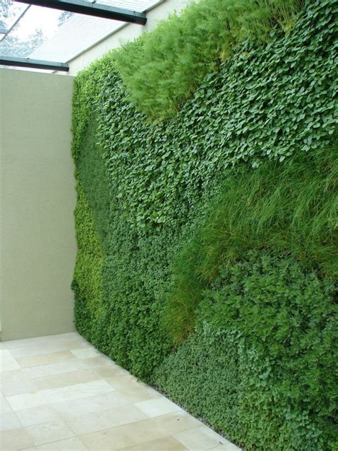 indoor herb garden wall living walls design insider
