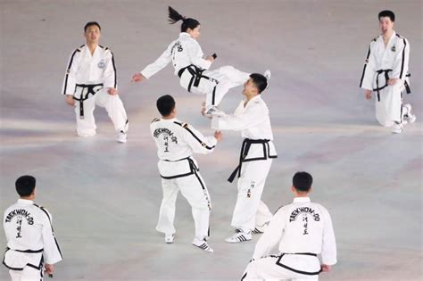north  south korea celebrate peace  taekwondo