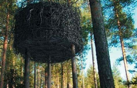 sugli alberi prezzi un albergo sugli alberi il tree hotel di harads in svezia