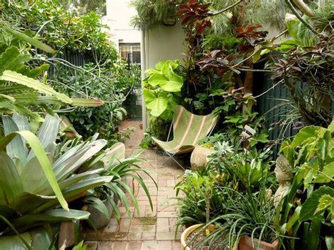 peter nixons sydney subtropical courtyard garden