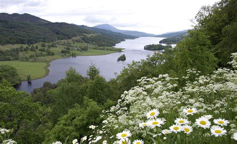cottages in scotland to rent scottish cottages with availability in august