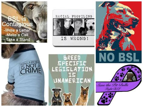 Essay Against Breed Specific Legislation help cant do my essay breed specific laws drureport264 web fc2