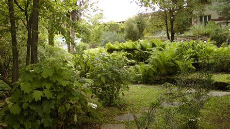giardino botanico giardino botanico rea