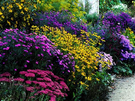 How To Plant A Butterfly Garden Plants To Attract Butterfly Flower Garden