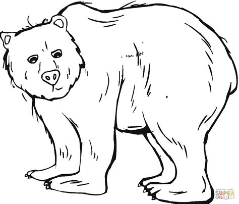coloring page of grizzly bear grizzly bear 6 coloring page free printable coloring pages