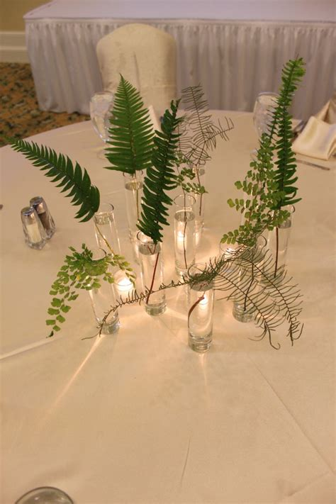 fern decor best 25 fern centerpiece ideas on pinterest fern flower