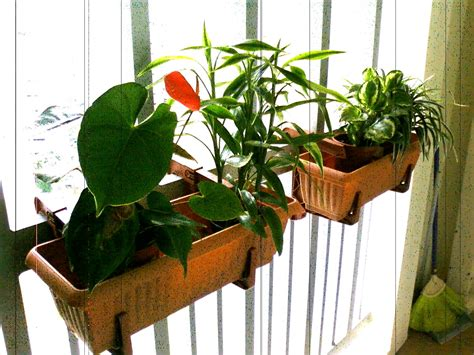 deck rail planter pretty gardens deck rail planter makes great small space gardens