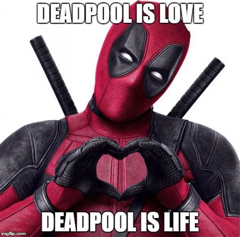 Funny Deadpool Memes - funny deadpool meme deadpool is love deadpool is life
