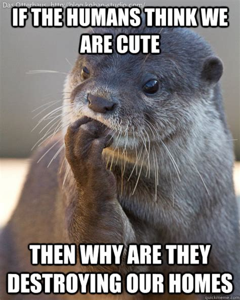 Sea Otter Meme - cute otter meme pictures to pin on pinterest thepinsta