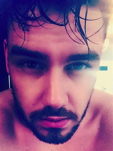 payen instagram 1d s liam payne s got some serious selfie lately