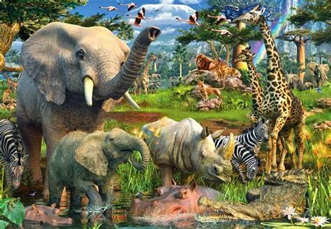 imagenes de animales jungla animales animales de la selva