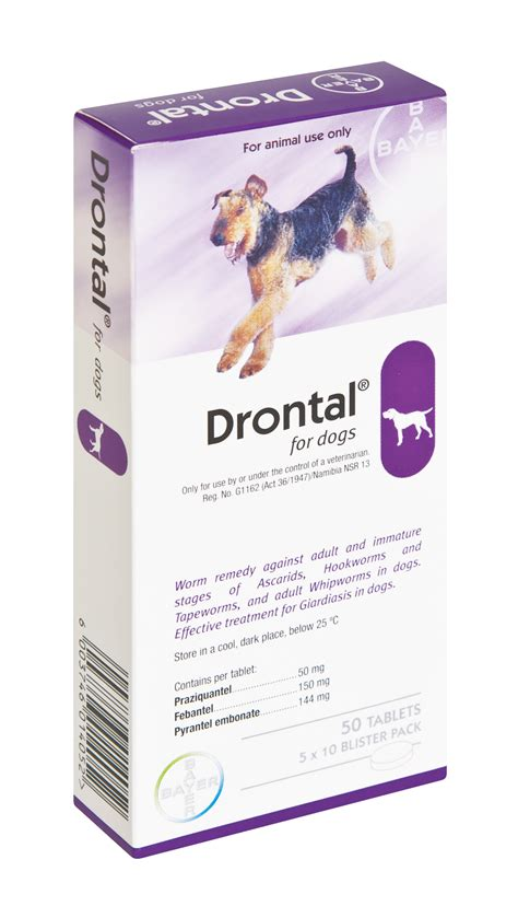 drontal for dogs dogs pict breeds picture