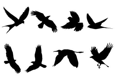 silhouette vector flying bird silhouette vector download free vector art