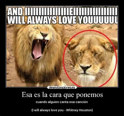 imagenes de i will always love you im 225 genes y carteles de whitney pag 5 desmotivaciones