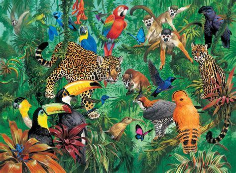 imagenes de animales de la selva garden we love drawing inspiratie verdwaald in de jungle