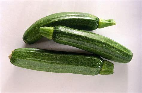 come cucinare zucchine come cucinare le zucchine sale pepe