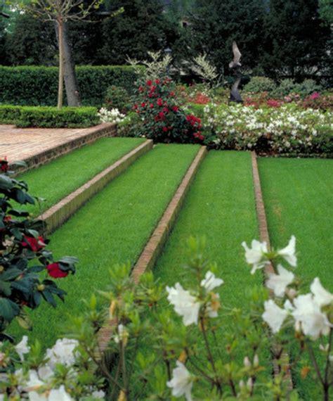 Garten Gras Pflanzen by Garten Gras Pflanzen Natur Blume Gras Pflanze Garten