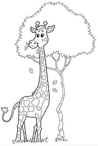 preschool coloring pages giraffe preschool giraffe coloring pages 7 171 funnycrafts